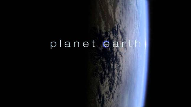 Best Nature Documentaries On Netflix