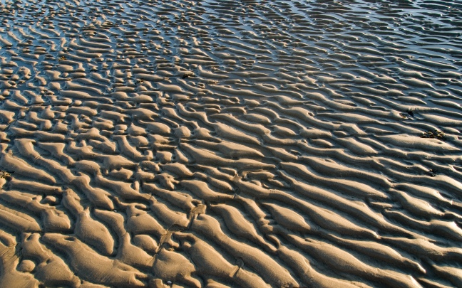 Rippled Beach Sand and Water